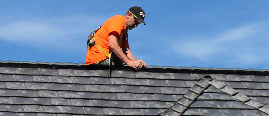 Home Dayus Roofing